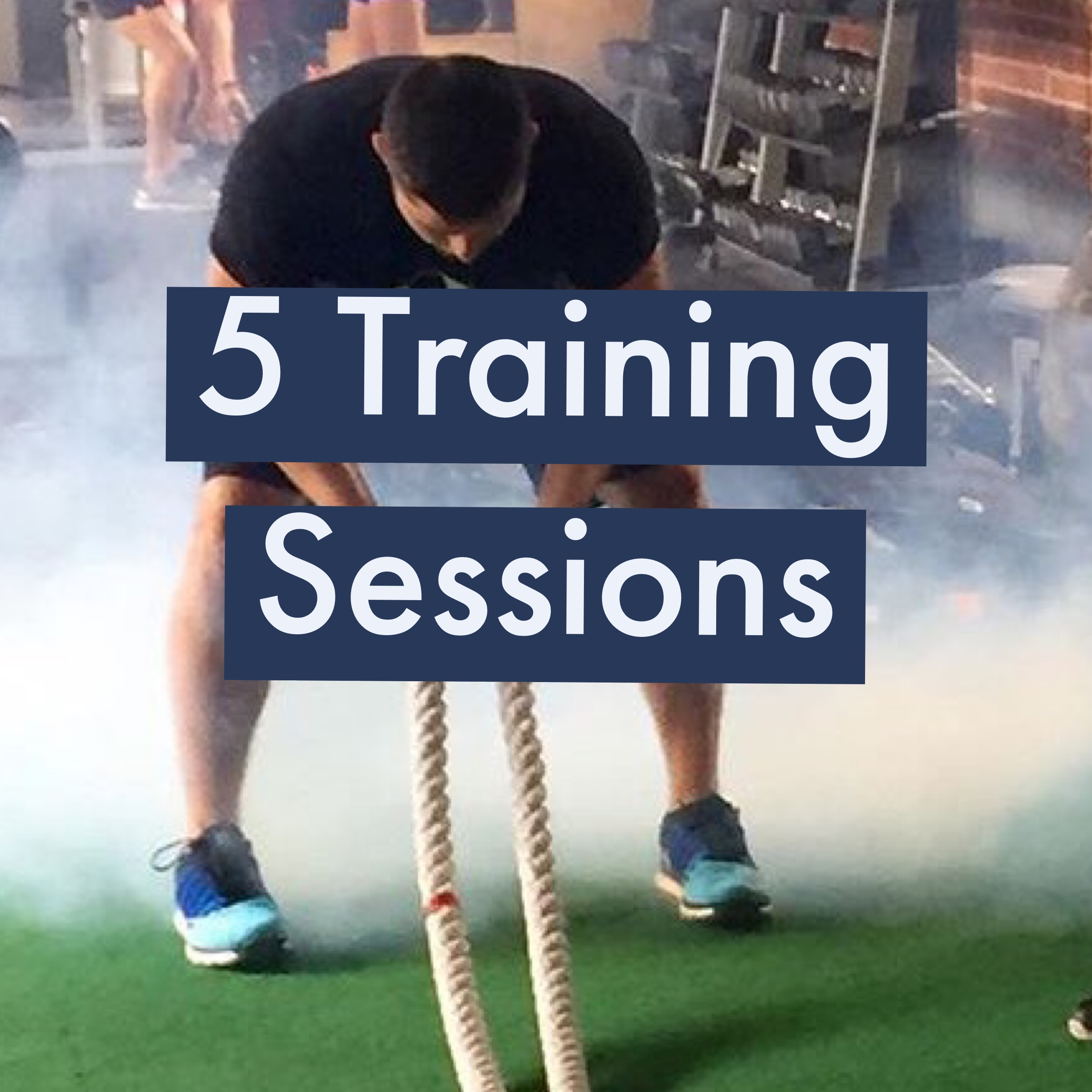 5- 30 Minute Training Sessions